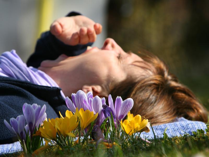 Pünktlich mit dem Frühling kommt auch die Frühjahrsmüdigkeit...