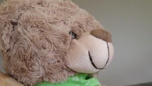 Teddy Pinus ist einer der Bestseller für Kinder