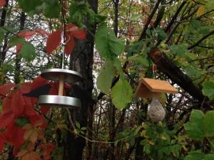 Mit einem Vogelhäuschen von 4betterdays holt man sich Leben in den Garten