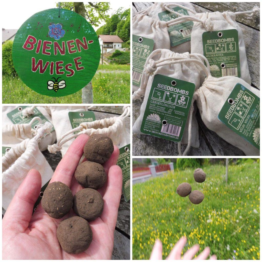 Fotos vom Ausbringen der Samenbomben auf Astrids Bienenwiese