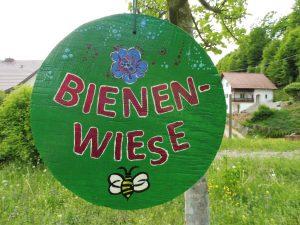 Foto 2/5 vom Ausbringen der Samenbomben auf Bienenwiese.