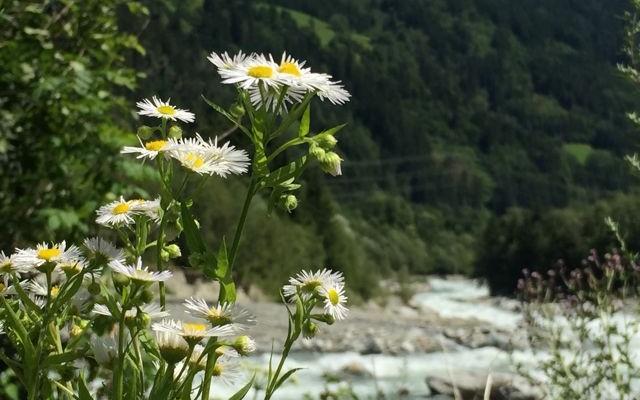 Osttirol hat für jeden Geschmack etwas parat. (C) Florian Warum