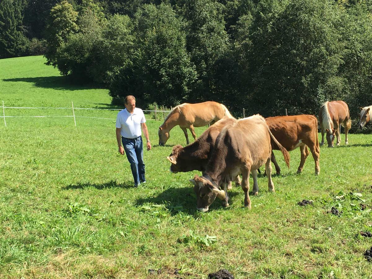 Besonders wichtig ist für Herrn Mühlberger das Funktionieren eines harmonischen Miteinanders von Landwirtschaft und Tourismus.