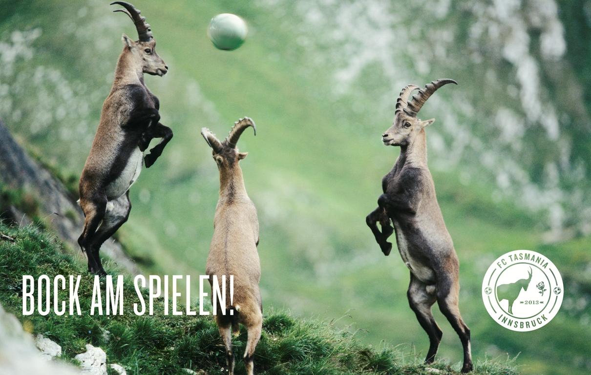 Auch wenn die Jungs des FC Tasmania 2013 nicht immer ganz vorne mitspielen - echten, ehrlichen und unverkäuflichen Alpenfußball mit ordentlich Bock am Spielen gibt's bei ihnen immer zu sehen. (unlängst konnte beim Pfingstturnier in Buch in Tirol übrigens der ersten Titel errungen werden)