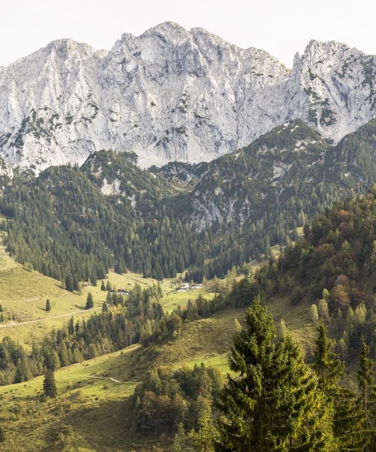 Die Scheffauer Nordwand beeindruckt. Klettern in Kufstein heißt auch von einer wunderschönen Naturkulisse umgeben zu sein.