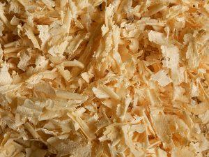 Ein Wahnsinn. Gar harmlose Kuscheltiere werden mittlerweile mit Zirbenspänen gefüllt! (Bild: (c) 4betterdays.com)