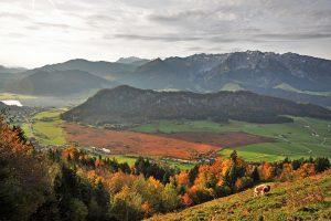 """Wandern im Herbst: """"Die Schwemm"""" ist zu jeder Jahreszeit sehenswert. (C) Tiroler Schutzgebiete"""